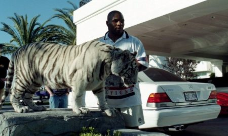 Mike Tyson's Mansion which once housed 4 Tigers set to become a Church 16
