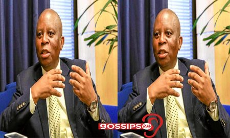 Johannesburg Mayor, Mashaba