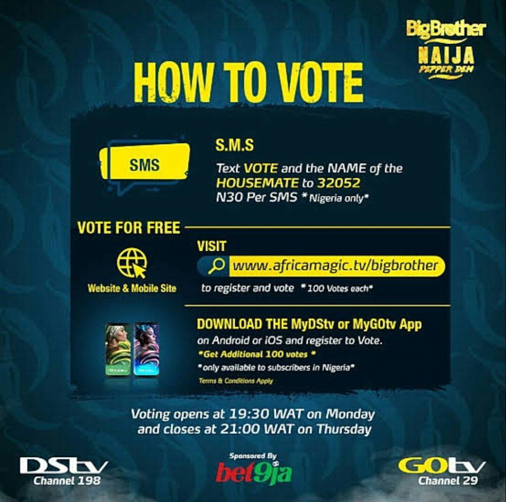 4 Major Ways to Vote For BBNaija Housemates